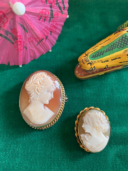Victorian Carved Shell Cameo