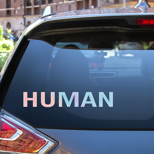 Holographic Decal Pun Human