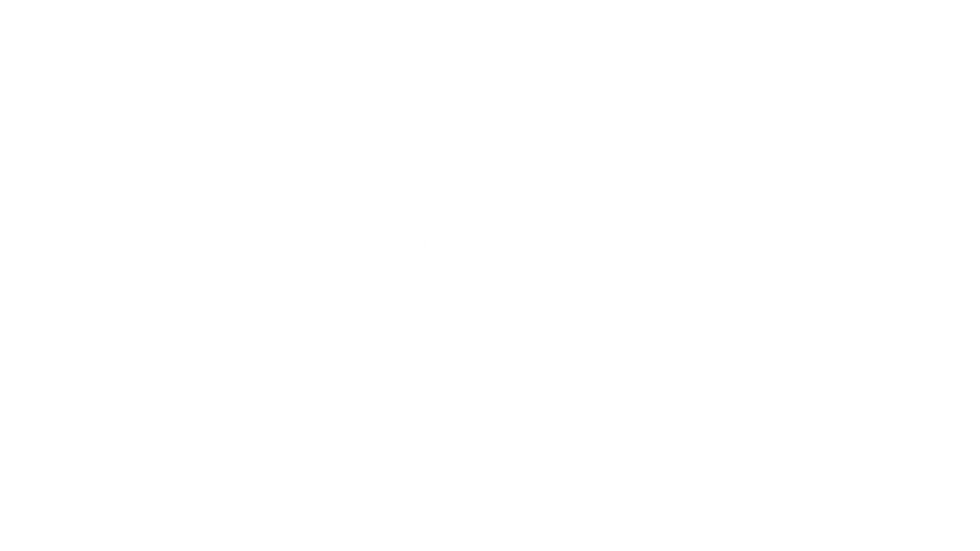PDM Waveform 1.1.png