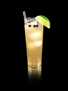 Gin and Tonic, G&T, Gin and Tonic mocktail, nonalcoholic G&T, alcohol free gin, Gin mocktail