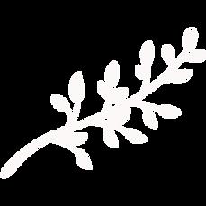 FAVPNG_twig-branch-tree-drawing_KgFmpCPA