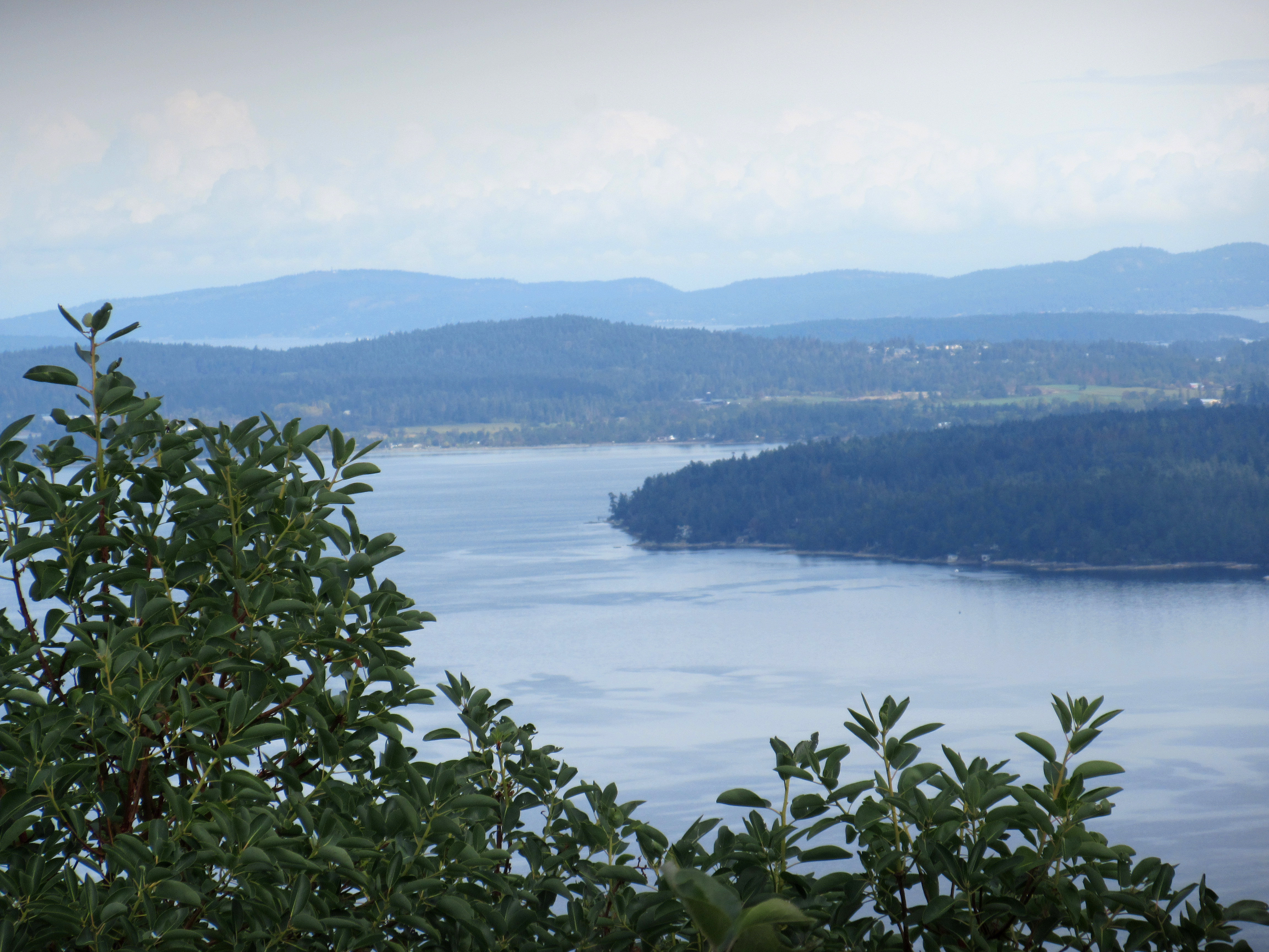 View on the Malahat highway.