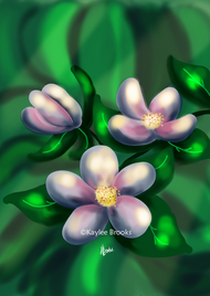 apple blossoms watermark.png