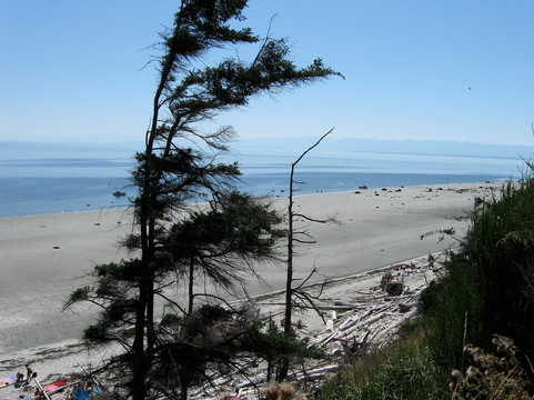 Savary beach view