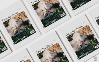 Time for Paws - Publication