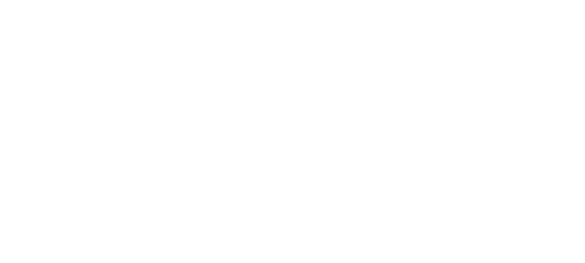 NAVI New Logo3