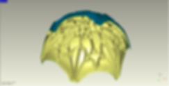 Cupula Teposcolula Modelado.png