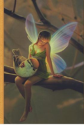 Address Book - Fairy