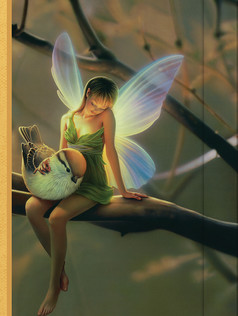 Small Journal - Fairy