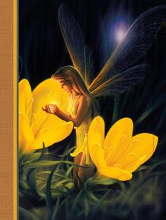 Journal - Night Fairy