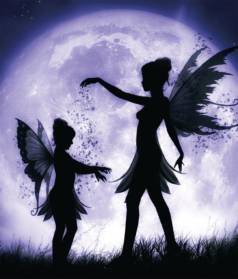 Lock Journal - Fairy Sisters