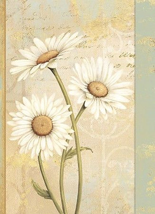 Address Book - Beautiful Daisies