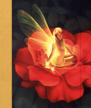 Journal - Fairy Nocturnal Light