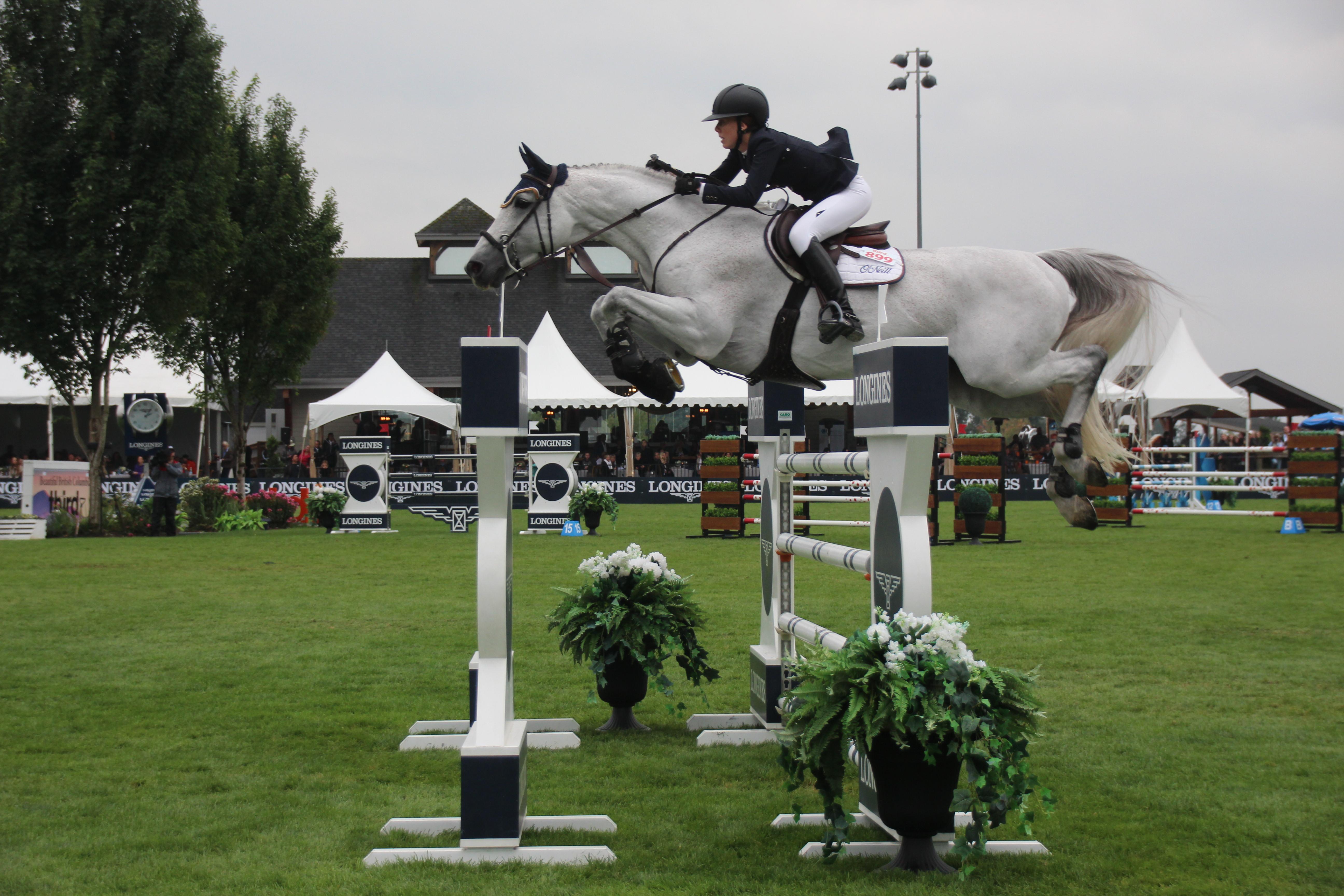 horse mid jump iPOLPOPHOTOS