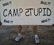 Camp Stupid.jpg