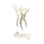 Torso-Logo-842x842-Logo.png