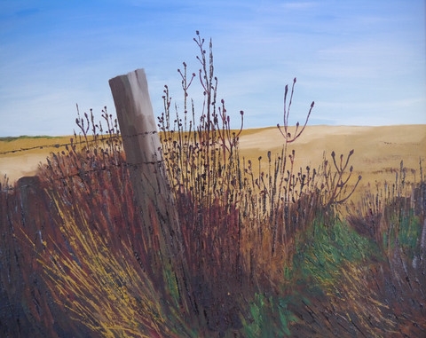 Autumn Fields, Pitmilly