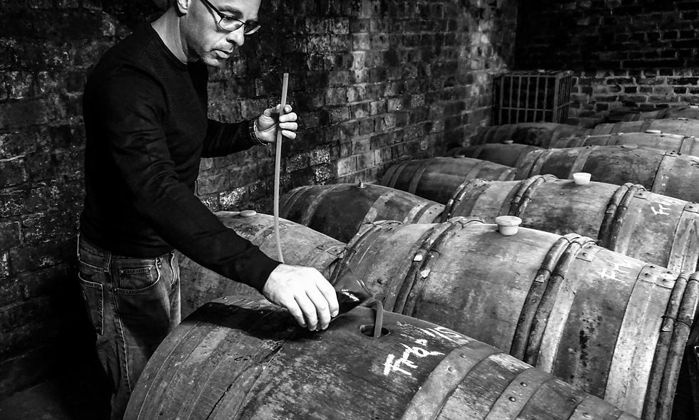 Pinot Noir Precocé/Frühburgunder ´13/´15