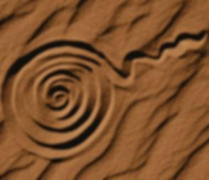 Hopi Spiral Circle of Life1.jpg