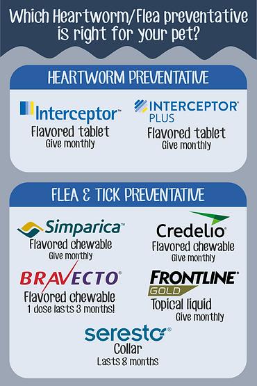 Heartworm-flea preventative.png