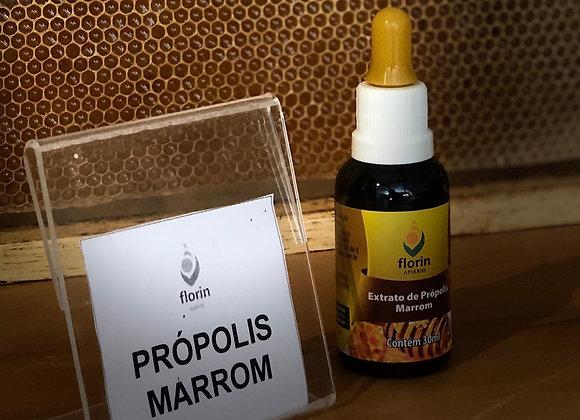 EXTRATO DE PRÓPOLIS - 30ml - MARROM
