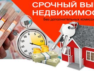 Выкуп недвижимости — 7 основных этапов выкупа квартир и домов по рыночной цене + профессиональная по