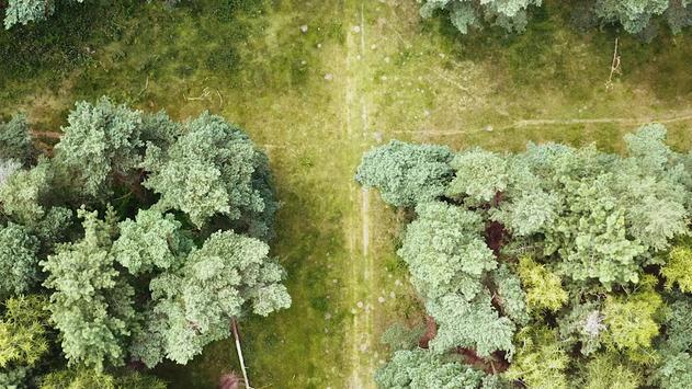 Vision X Trailer