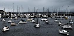 Bay+Full+of+Boats.jpg