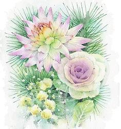 水彩画・花:年賀の花(ダリア・葉ボタン・松):福井良佑