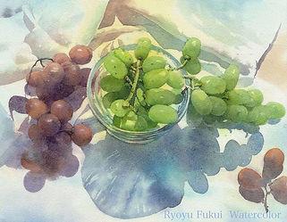 「葡萄・光の朝」水彩画
