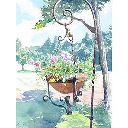 「風薫る」 水彩画:吊るされたフラワーポットに夏風が優しく吹く