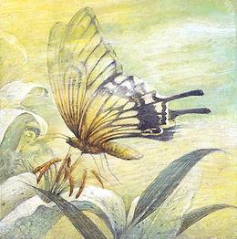 水彩画「薫風」アゲハチョウと百合/ 福井良佑