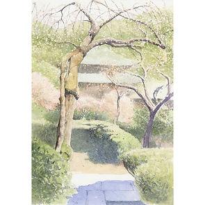水彩画・日本の風景「花匂ふ」(鎌倉・瑞泉寺)福井良佑