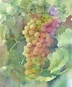 水彩画・静物「葡萄1 」福井良佑