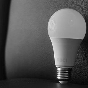 bulb 3.jpg