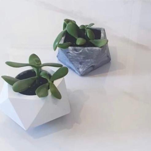 Pots Quartz et Émeraude