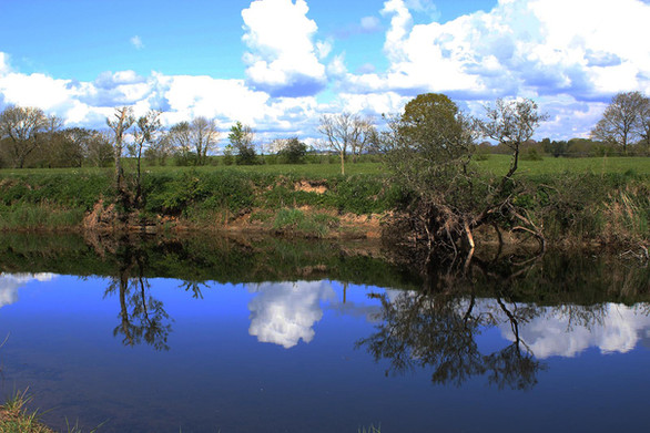 River Reflections