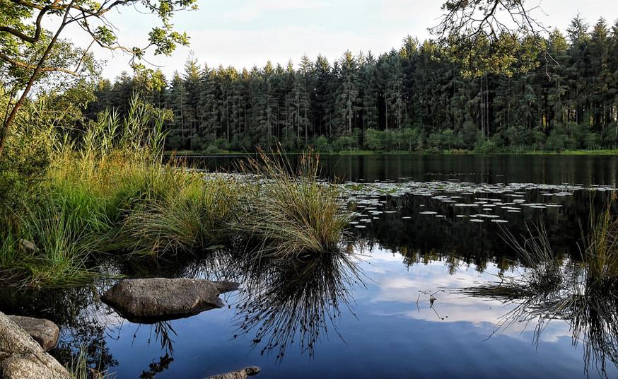 Dalbeattie Loch