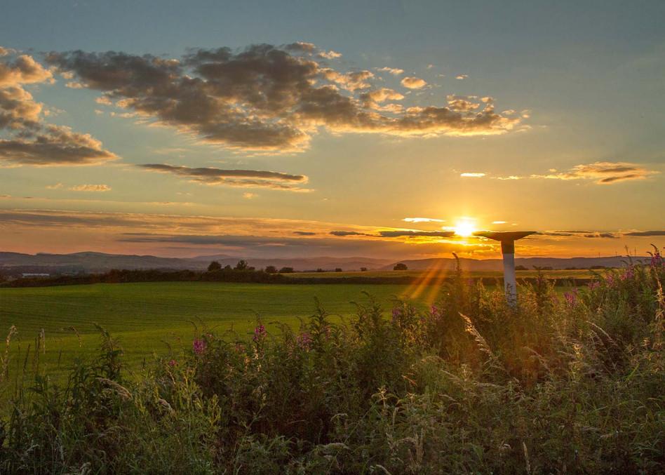 Tinwald Sunset
