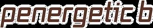 penergetic-b_Schriftzug_280417.png