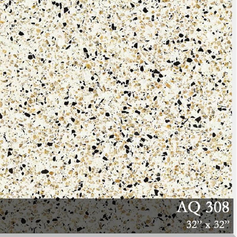 10 AQ308.jpg