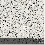 9 AQ306.jpg