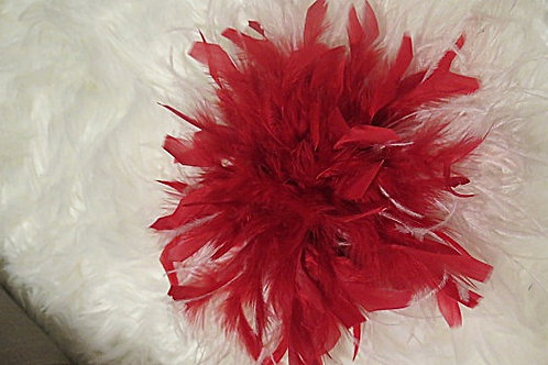 Red Pin Feather Brooch