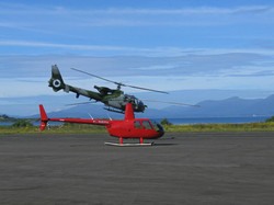 R44 Clipper and Gazelle