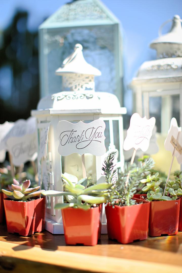 markleville-gardnerville-wedding-2019-66