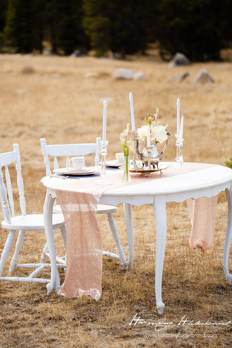 White Antique Chairs & Round White Table