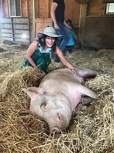 andy&pig.jpg