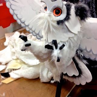 Owl for Bronx Zoo