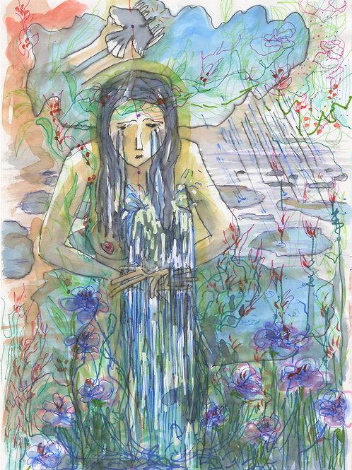 Pluies et Marécages