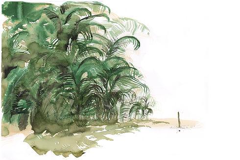 denis bambou10x15.jpg